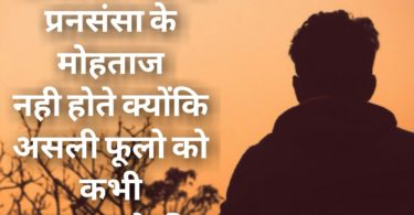 Status Shayari in Hindi