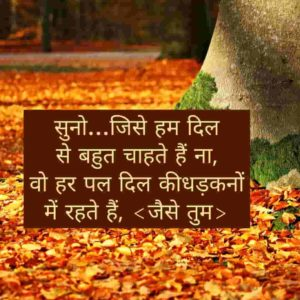 purpose karne ki shayari