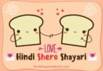 Hindi Shero Shayari Hindi Shero Shayari on Love हिन्दी शायरी